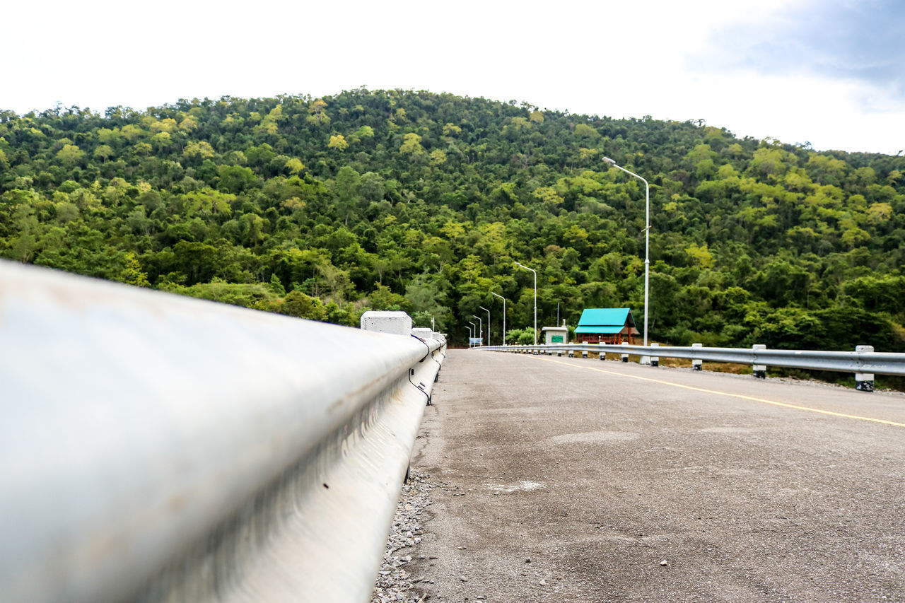tree, transportation, plant, road, sky, mode of transportation, day, nature, no people, motor vehicle, growth, land vehicle, car, green color, outdoors, the way forward, street, direction, city, cloud - sky, crash barrier