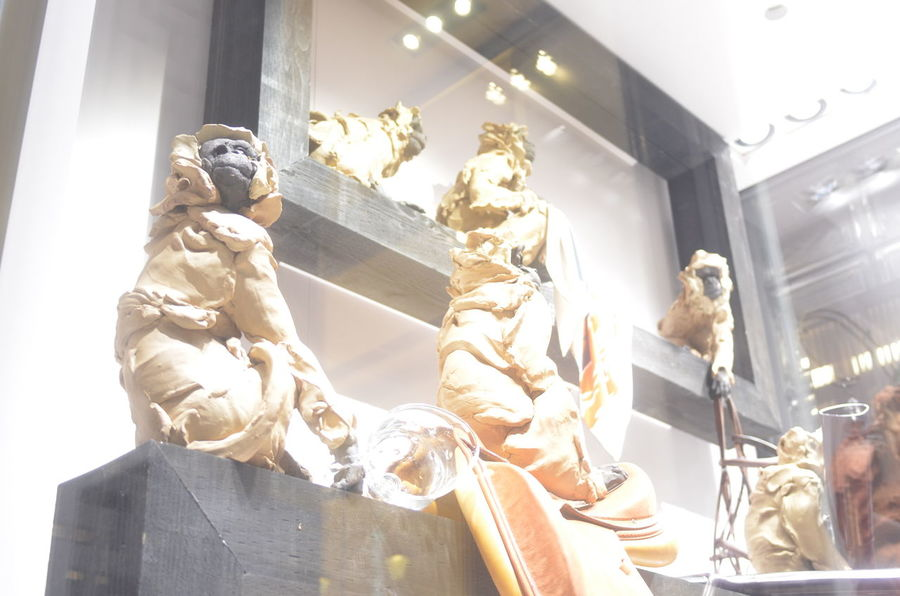 Monkeys Animal Statues Animal Themes Window Display Photography Window Display From My Point Of View Night Lights Streetphotography Lights Light Up Your Life Reflection Getting Inspired Capture The Moment Ginza At Night Walking Around Taking Photos Nikon AI 28 F/2.8S New Lens Test Shot EyeEm Best Shots No Edit/no Filter December 2016