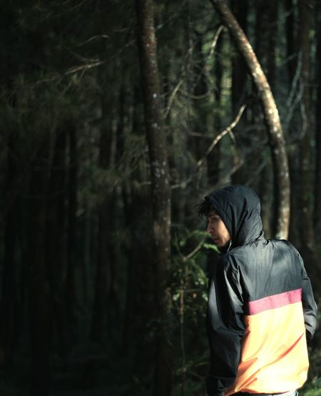 Rear view of man in forest