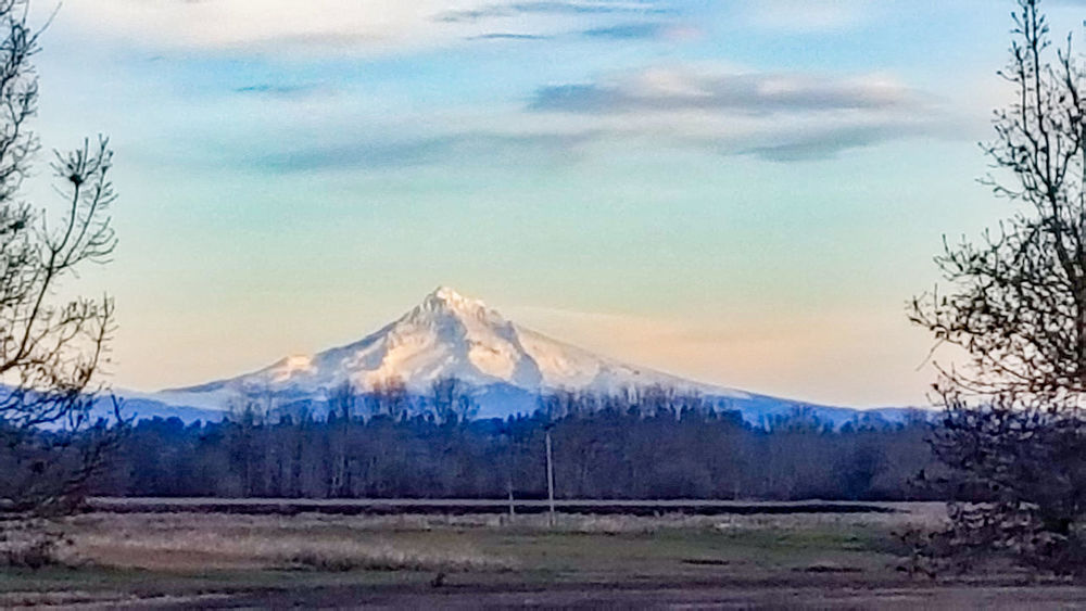 Mt Hood at a distance. I think this would make a great wallpaper or background image. Mountain Environment Landscape Tree Plant Cloud - Sky Scenics - Nature Beauty In Nature Cold Temperature Winter Snow No People Land Forest Tranquility Pine Tree Outdoors Mountainview Snowcapped Mountain Wallpaper Background Sunset Mountain Lovely View Silhouette Meadows And Fields The Great Outdoors - 2018 EyeEm Awards
