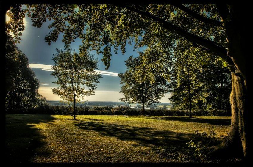 Stadtpark Boizenburg. (Aussicht zur Elbe)