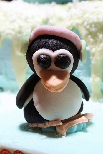 Animal Themes Candy Candy Animal Candy Penguin Childhood Close-up Penguin Penguins