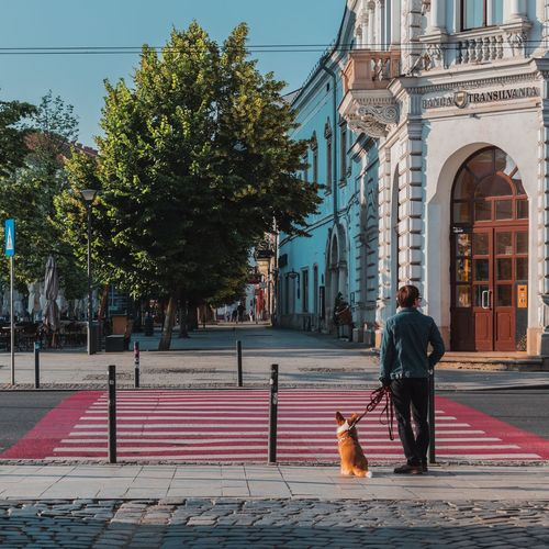 Man with dog standing on street in city