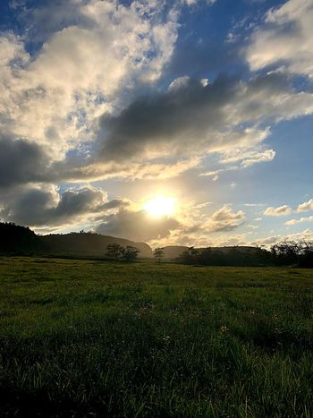 Open fields Puertoricotourism Puertorico Sky Cloud - Sky Field Beauty In Nature Scenics - Nature Land Plant Tranquil Scene Landscape Environment Tranquility Nature Agriculture No People Rural Scene Growth Farm Sunset Idyllic Tree