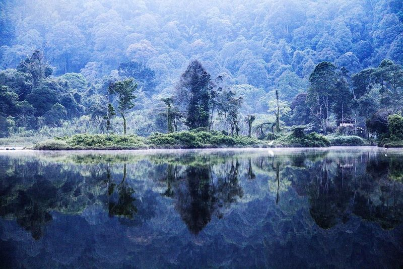 After sunrise I realise what for jungle I crossed by night. Situ gunung INDONESIA Naturelovers Travel Photography Lac Enjoying Life Edge Of The World