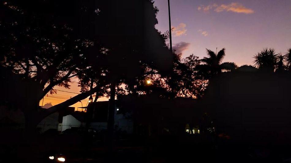 Tree Night Silhouette Outdoors Sunset No People Nature Illuminated Sky Tree Area Beauty In Nature City
