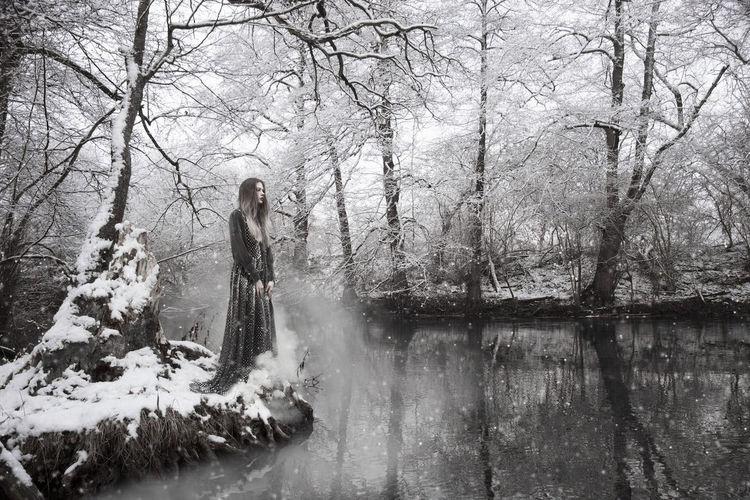 The Snowqueen Fairytale  Fairytales & Dreams Green Grey Queen Snow SnowQueen Trees Winter