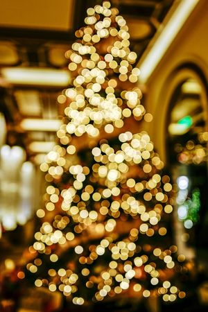 Bokeh Discoverhongkong Reframinghk Christmas christmas tree Decoration Holiday Celebration Christmas Decoration Tree Illuminated Christmas Lights No People Night Christmas Ornament Lighting Equipment Plant Holiday - Event Indoors  Defocused Close-up Focus On Foreground Light