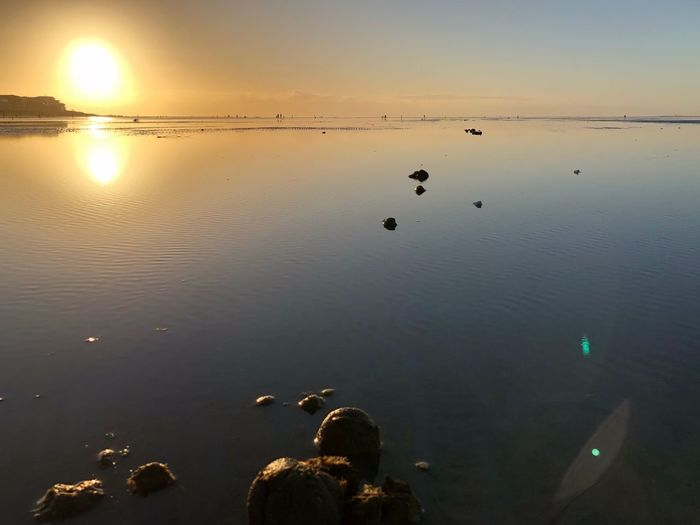 Water Reflection Sunset Nature Lake Beauty In Nature Tranquil Scene Scenics Tranquility Outdoors Silhouette Animal Themes Swimming Beach No People Sky Bird Nordsee Nordseeküste Sonnenuntergang Sea Sun Vertebrate Idyllic Tranquility Nature Beauty In Nature Reflection Scenics - Nature