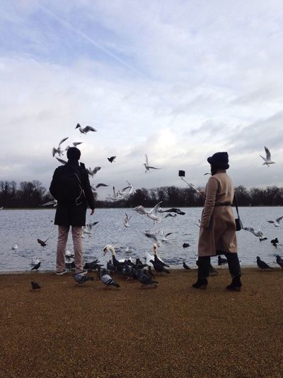 The Tourist Selfie ✌ Selfies London Park Kensington Gardens Feeding The Birds Wildlife Birds Pond Roundpond Visiting Winter February