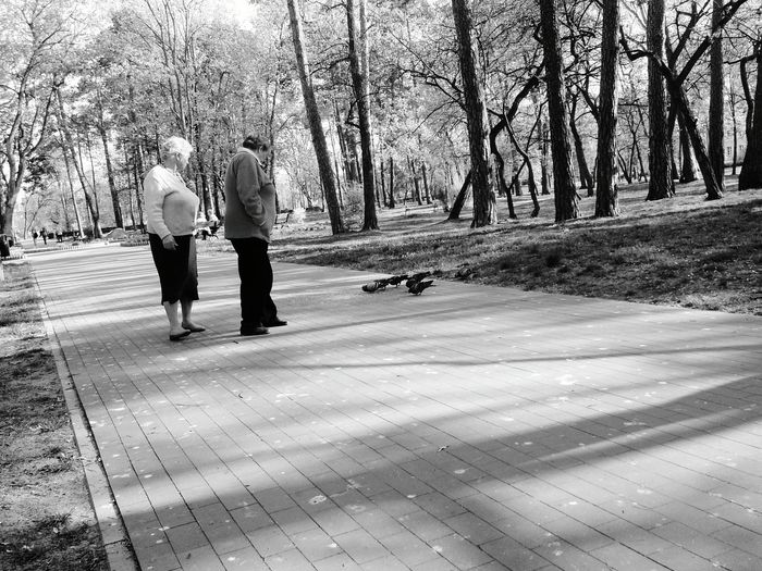 City Park People Watching Pigeons Blackandwhite Photography Light And Shadow My City