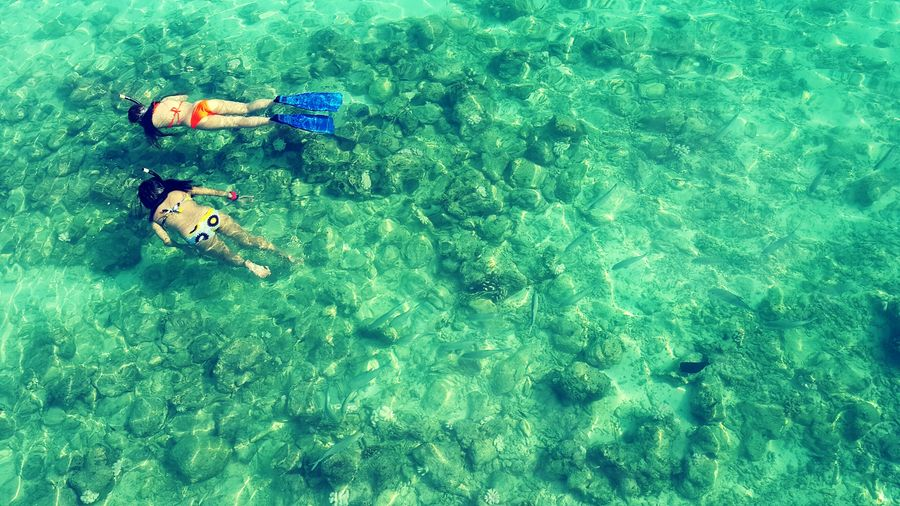 High Angle View Of Women Wearing Bikini While Snorkeling In Sea