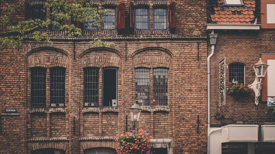 Architecture Building Exterior Built Structure Brick Wall Flower Potted Plant Window Outdoors Plant Day Low Angle View Window Box No People City