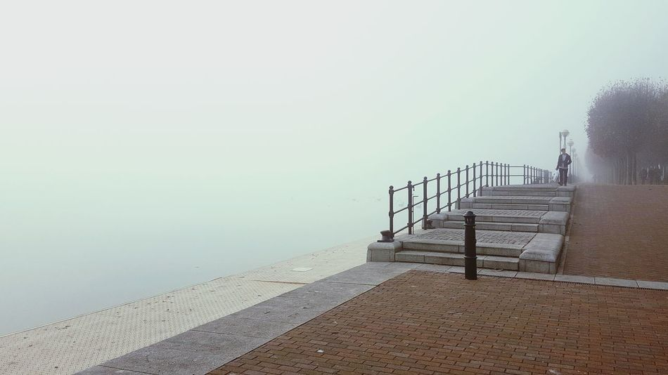 Foggy Morning Songbird  Foggy Water Sky Night Tranquility Perching Lake Outdoors Nature Weathered Foggy Day Fog_collection Foggy Weather Foggymorning