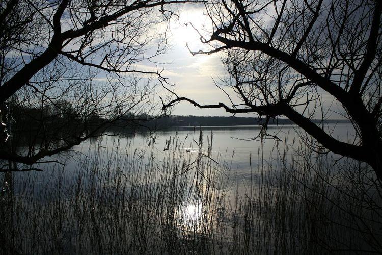 Dazwischen. ... Abends am Meer Steinhude-am-meer.de - Dein Meer-Foto