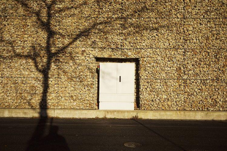 Shadow of tree on stone wall