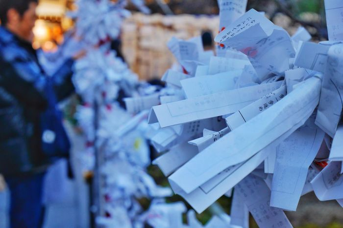 Paper fortune/一歩一歩 Omikuji Paper Fortune Shrine Japanese Tradition Pray Walking Around Hanging Out LUMIX DMC-GM5K