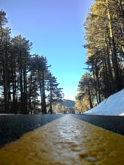 #2016 #clearsky #december  #Road #snow #Uludağ/BURSA/TURKEY #White Beauty In Nature