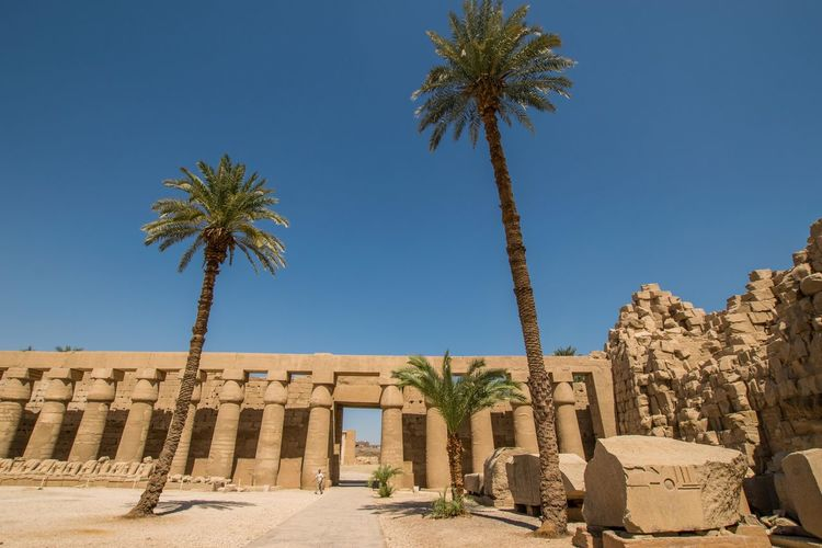 Low angle view of palm trees and old ruins against clear blue sky