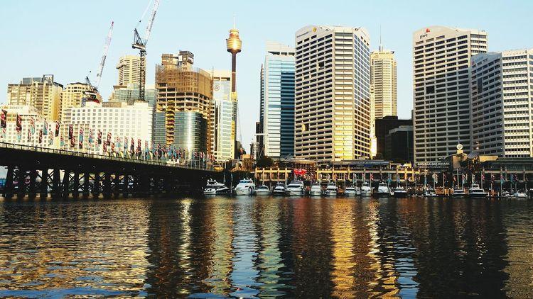A shot from cocklebay wharf Sydney Shinning Bright