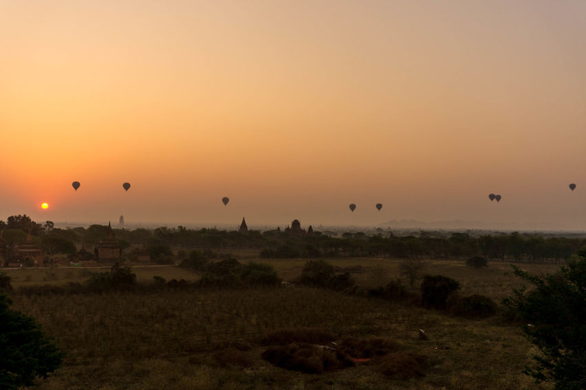 #Amazing #Bagan In #Myanmar #Myanmar #Sunrise #baloons #sony #sunset #sun #clouds #skylovers #sky #nature #beautifulinnature #naturalbeauty #photography #landscape Beauty In Nature Day Field Hot Air Balloon Landscape Nature Sky