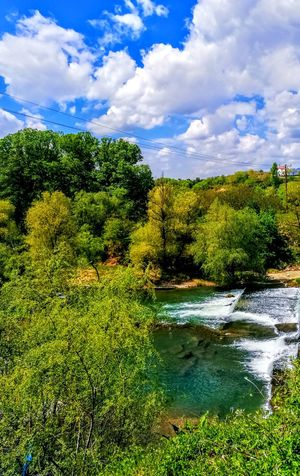 EyeEmNewHere Outdoors Biking And Photography Blue River Wellness Blue Sky Freshness Backgrounds Green Color Growth For EyeEm , HUAWEI P 9