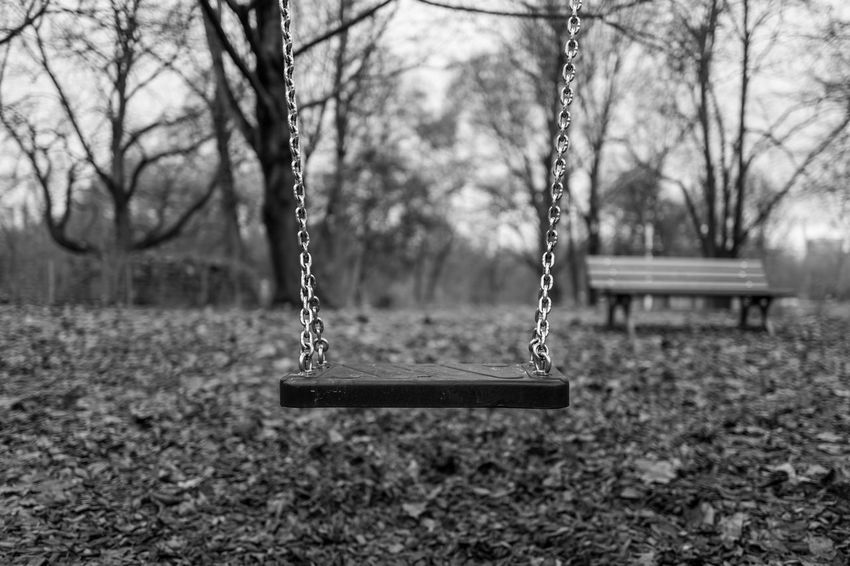 Empty swing in Frankfurt Frankfurt Abandoned Bare Tree Chain Childhood Close-up Day Empty Focus On Foreground Grueneburgpark Hanging Nature No People Outdoor Play Equipment Outdoors Park - Man Made Space Playground Rope Swing Seesaw Swing Tree
