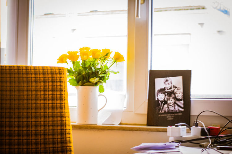 Exceptional Photographs EyeEm Best Shots Day Eye4photography  Flower Freshness Home Interior Indoors  New Day No People Table Vase Window Yellow