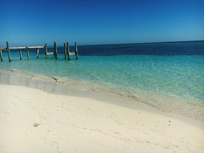 Sea Beach Water Sand Clear Water Bahamas Boardwalk Seagull Clear Sky Nature No People Blue Tranquil Scene Tranquility