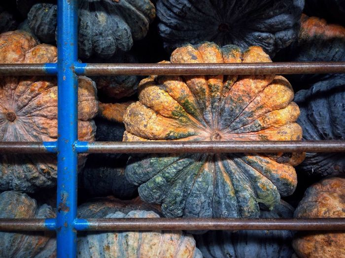 Close-Up Of Heap Of Pumpkins