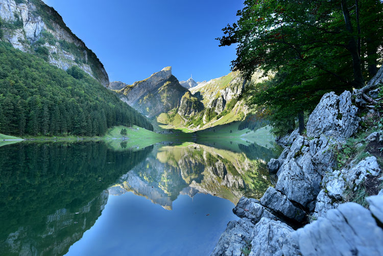 The Lake Seealp at Alpstein Water Reflection Scenics - Nature Beauty In Nature Lake Tranquility Tranquil Scene Mountain Non-urban Scene Nature Rock Sky Idyllic No People Day Solid Plant Rock - Object Outdoors Switzerland Alps Mountain Forest Mountain Lake View Idyllic Landscape Summit Views Lakescape Collection