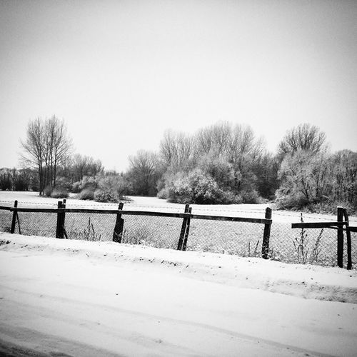 Wintertime Winter Winterwonderland Instalike Instadaily Photoftheday Pictureoftheday Street Snow Forest Home Hungary Hungarylife Februar Cold Naturelovers Nature Naturelover MyPicture Mypic White Weather