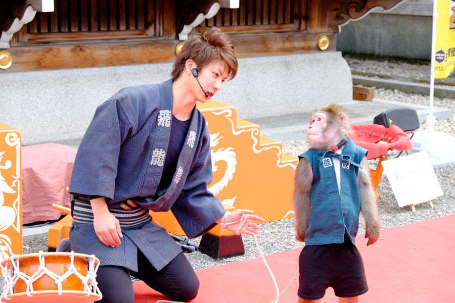 亀戸天神で太郎次郎一座の猿回し Fujifilm Fujifilm X-E2 Fujifilm_xseries Japan Japan Photography Japanese Culture Monkey Monkey Man Monkey Performance Tokyo XF18-55mm 亀戸 亀戸天神 亀戸天神社 東京 猿 猿回し