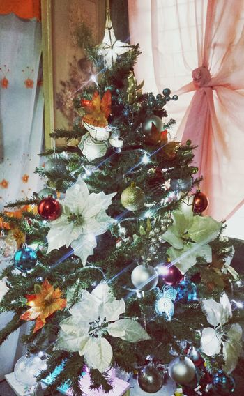 Our humble Christmas Tree is up! Better late than never. CountdownToChristmas Colorful Happiness :)