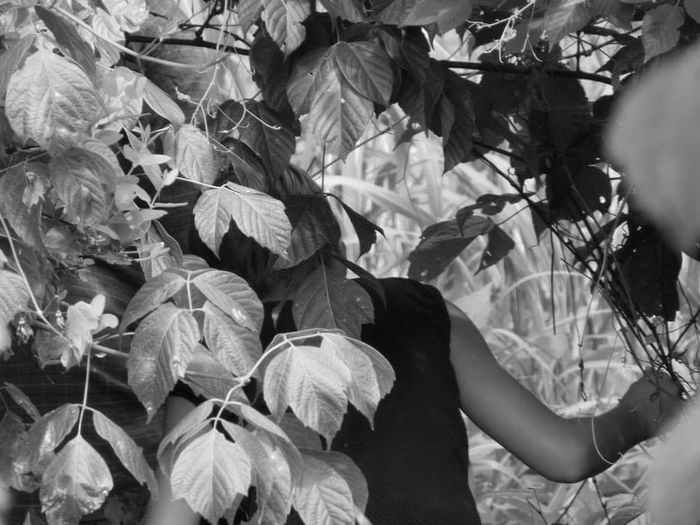 Exploring New Ground Exploring ExploreEverything Exploring Nature Exploration Exploring Virginia Adventure Adventure Time Adventure Is Out There The Eyeem Award 2016 Everyday Emotions Everyday Emotion The Essence Of Summer- 2016 EyeEm Awards Nature's Diversities