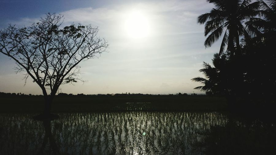 This shot was when I was riding a motor cycle and I just want to capture this. 1stWeek