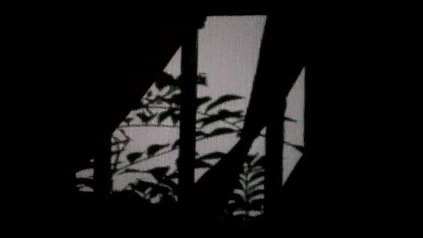 Shadow art