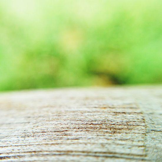 Supernormal Bokeh Nexus5photography PhotoJojo Macro