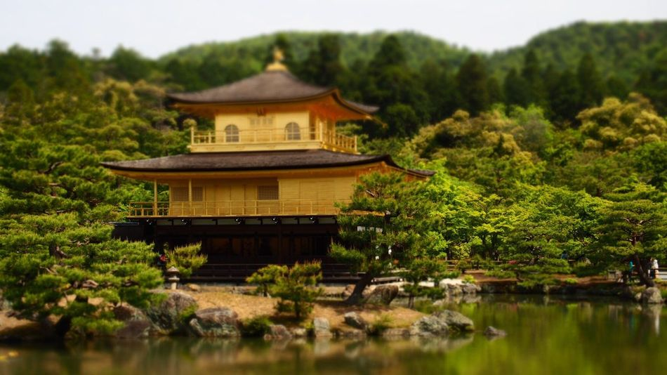 Kyoto, Japan Kingakuji Temple Temple Architecture Gold Colored Japanese Culture Culture Of Japan
