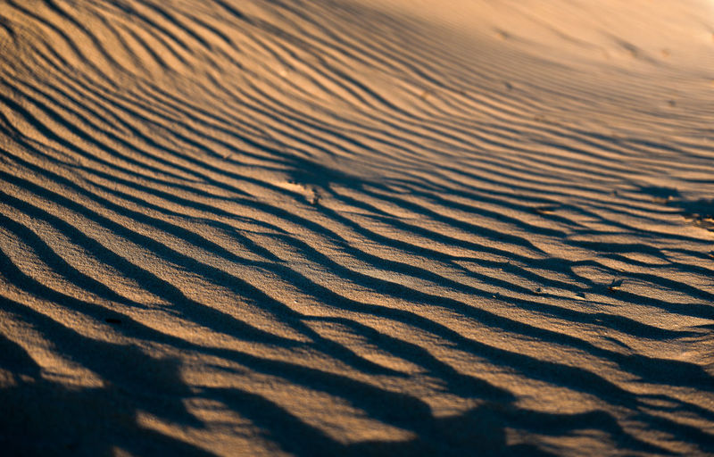 Desert Natural Pattern Rippled Sand Dune Tranquility