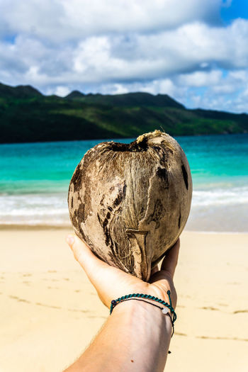 Coconut Dominican Republic Beach Beauty In Nature Cloud - Sky Day Finger Focus On Foreground Hand Holding Human Body Part Human Hand Land Nature One Person Outdoors Personal Perspective Point Of View Real People Samana Sand Sea Sky Unrecognizable Person Water