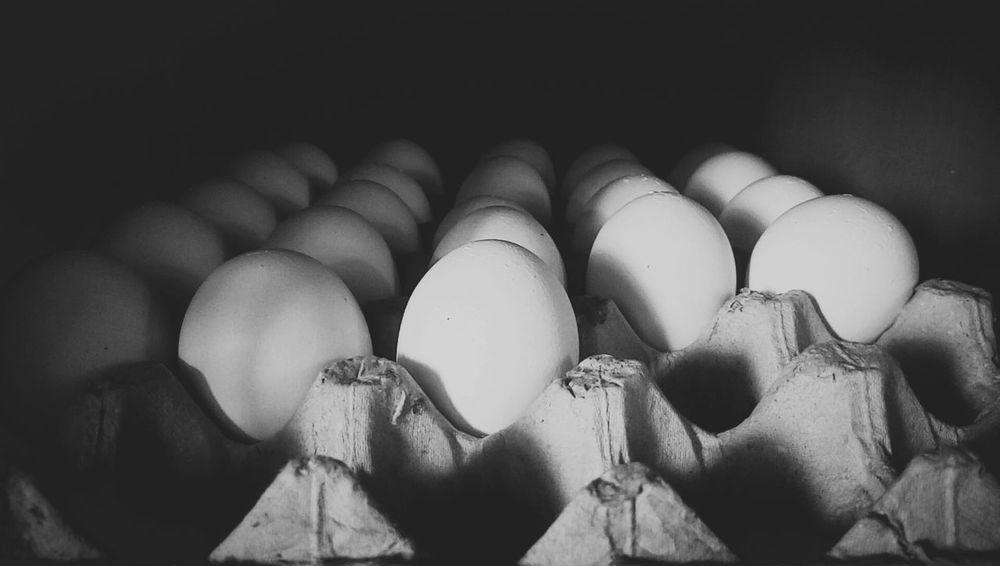 Everything In Its Place Showcase March Q Week On Eyeem Eggs Food Chicken Eggs Popular Week Of Eyeem Foodporn EyeEm Best Sellers Taking Photos Taking Photo Popular Photos