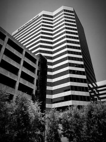 Architecture Building Exterior Built Structure Low Angle View Modern Development City Outdoors Blckandwhite B&w Black & White Black And White Photography Black And White Blackandwhite Architecture Low Angle View
