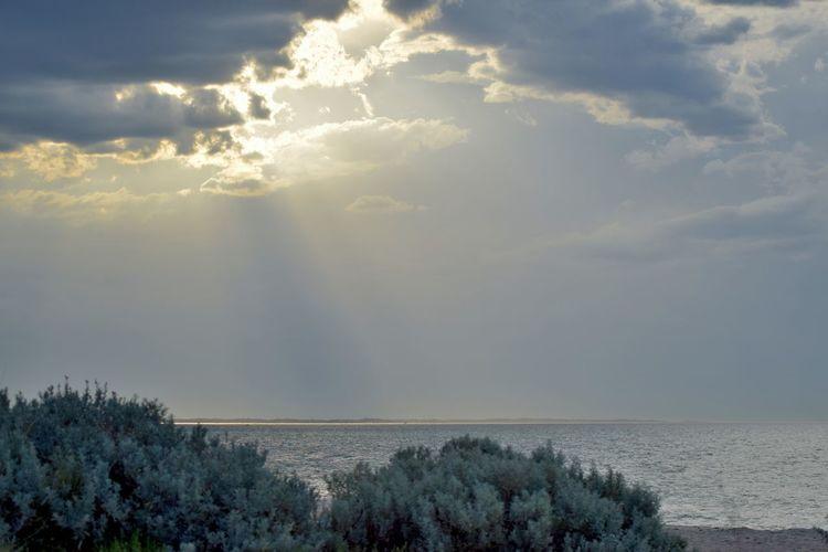 Sunbeams over Port Phillip Bay Cloud Cloud - Sky Cloudy Horizon Over Water Sea Sky Sun Sunbeam Sunlight Tranquil Scene Water