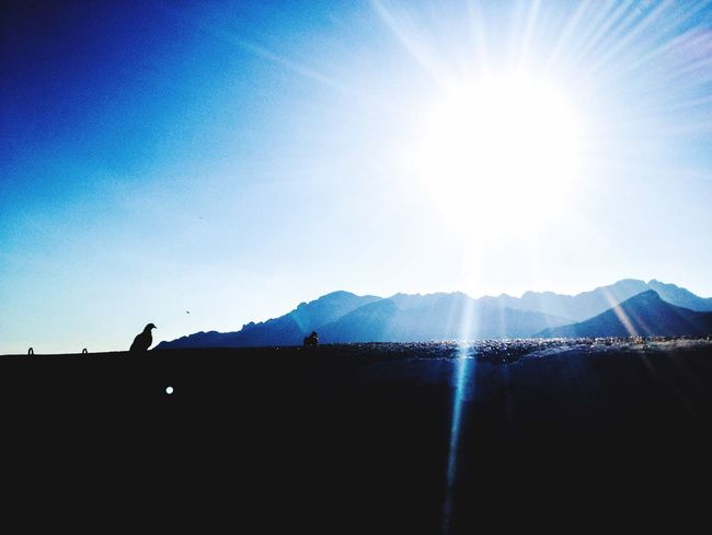 Silhouette Montains    Detail Particular Light Particular Sunrise Sky Calm Idilic Scenary Birds Color Palette