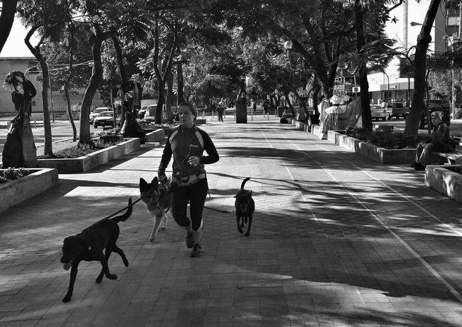 Streetphotography Street Photography Streetphoto_bw Blackandwhite Black & White Blackandwhite Photography Urban Photography Monochrome Streetphotography_bw Street Life