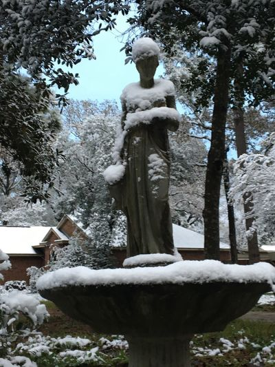 Eyem Nature Lovers  Eyem Gallery Water Feature Snow White White Water Goddess Now Snow Queen Southern Winter Texas Snow Eyem This Week Eyem Gallery Snow Queen Male Likeness Outdoors Day Winter Low Angle View Nature Snow No People Sky