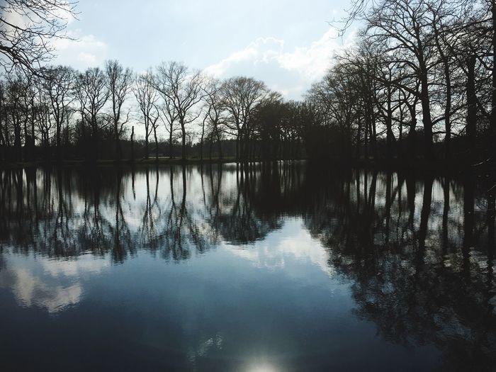 Landscape Landschap Trees Bomen Water Lake Meer Reflection Reflectie Weerspiegeling Reflections Sky Lucht Showcase April