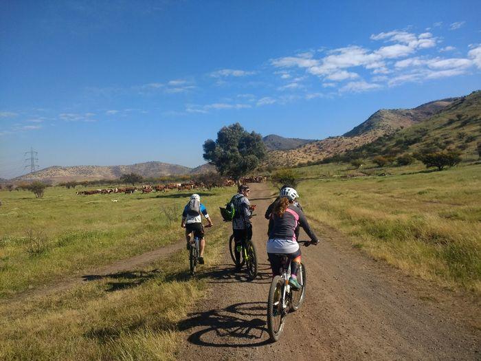 Tarde De Amigos Bicicleta🚲🚲🚲 Cerro Maipú Santiago De Chile EyeEm Selects
