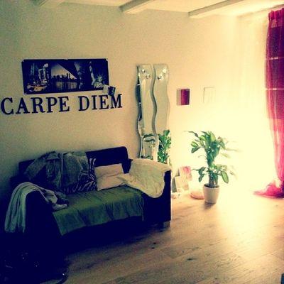 Lovely Homey Nice Carpe diem